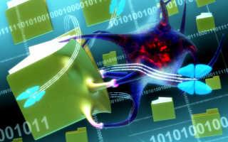 Классификация вирусов по деструктивному воздействию