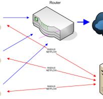 Network access server