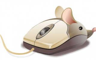 Не прокручивается колесико мыши в браузере