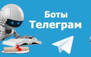 Телеграм бот для скачивания с ютуб
