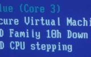 Secure virtual machine mode в биосе