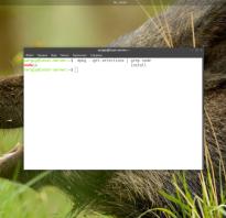 Node js linux install
