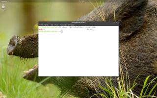 Linux install nodejs