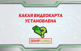 Приложение для определения видеокарты