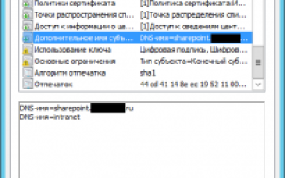 Sharepoint server 2020