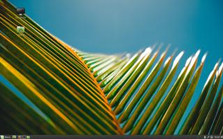 Linux mint core