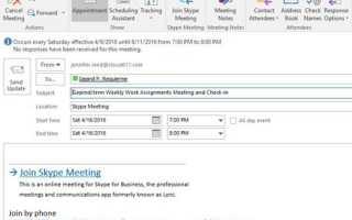 Собрание скайп для бизнеса